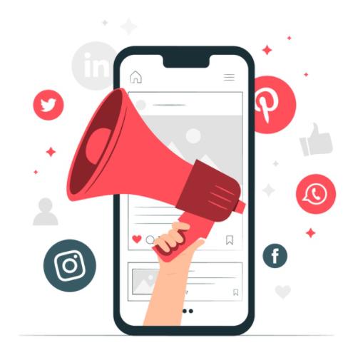 Social Media Marketing Companies in Chandigarh